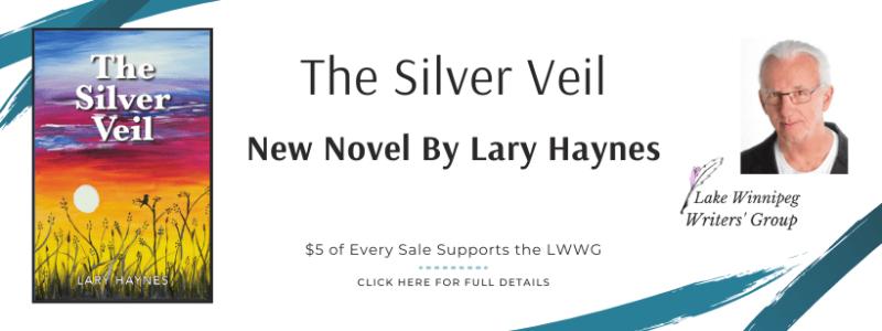 Silver Veil Advert Website Slider